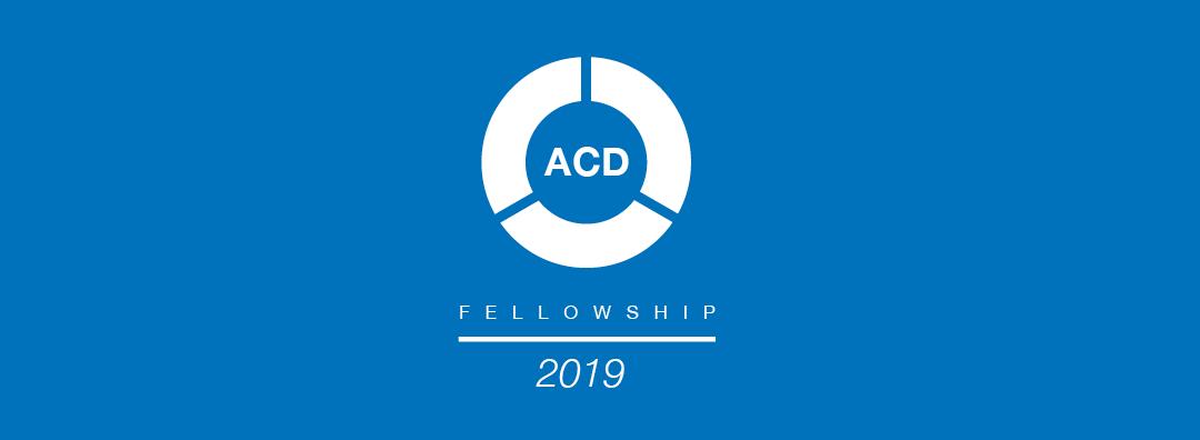 2019 Fellowship   Association for Community Design